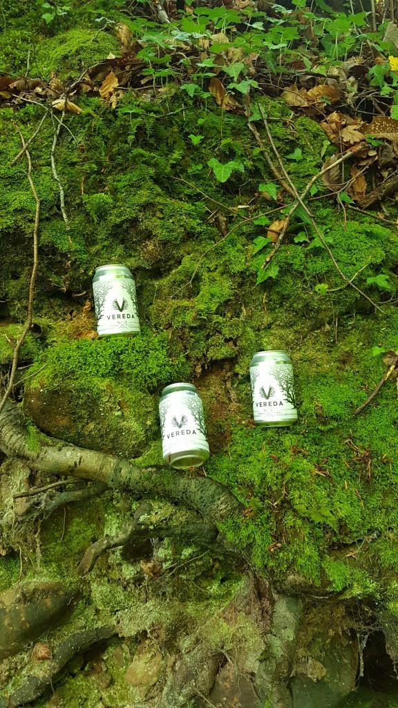 la cerveza abriéndose paso entre la vegetación- los corrales de buelna (cantabria)