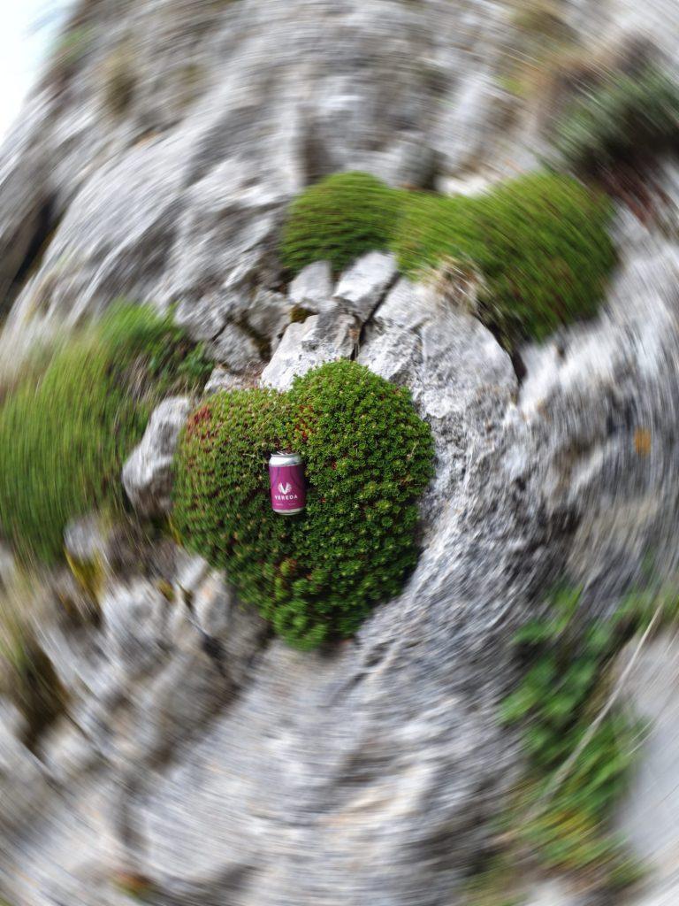 para un corazón verde, vereda - fuente COBRE (PALENCIA)